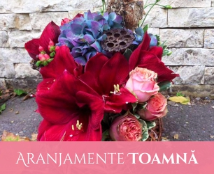 Aranjamente Florale Toamna